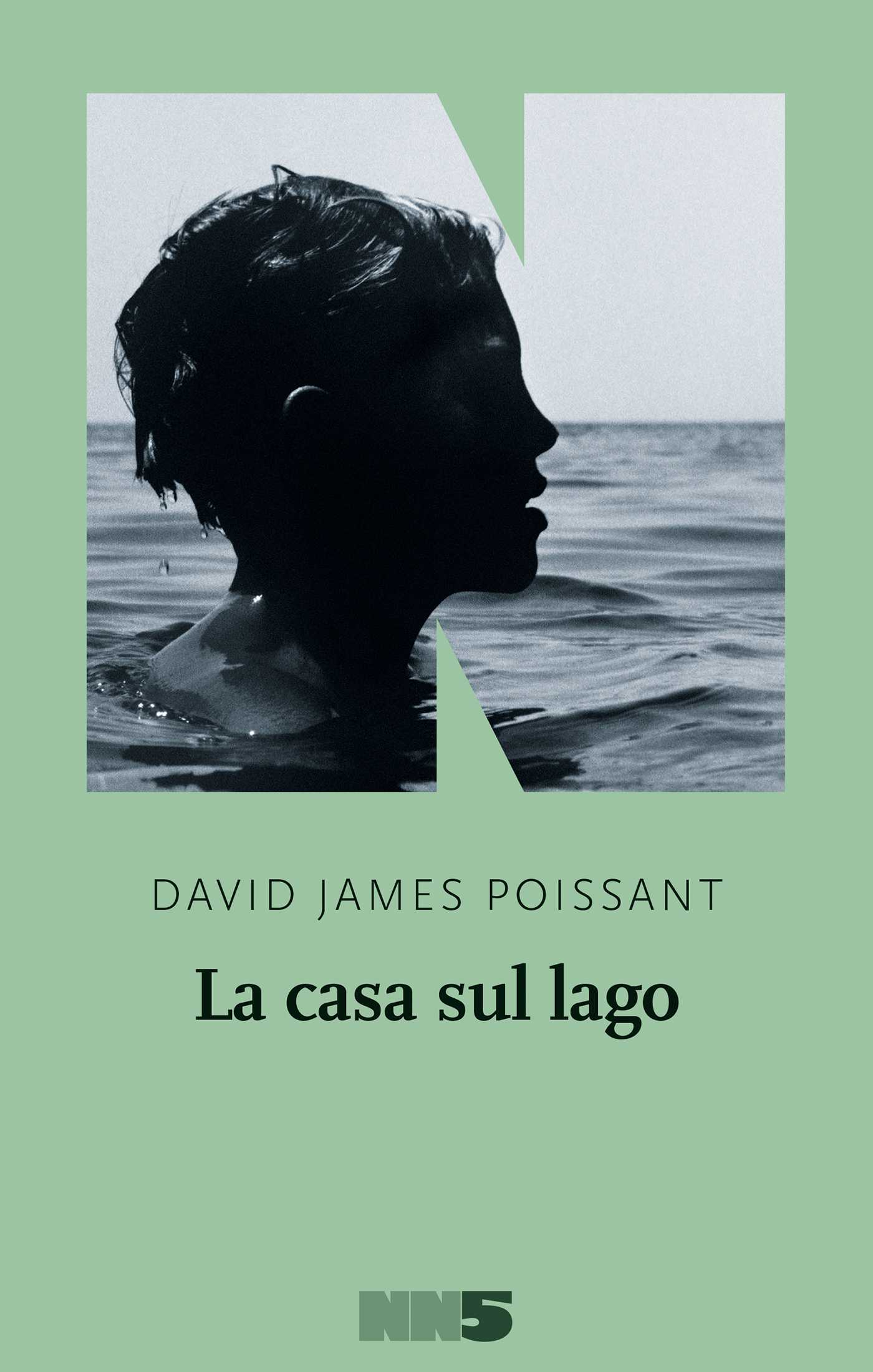 La casa sul lago - David James Poissant