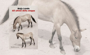 Gli ultimi della steppa - Maja Lunde anteprima